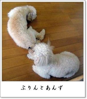 001_20110722084636.jpg