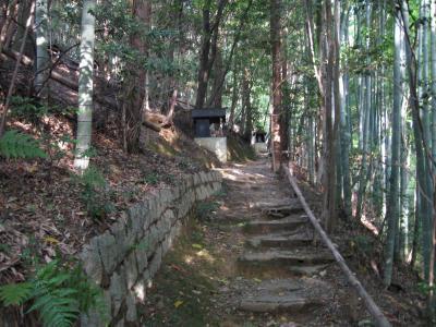 医聖堂への道
