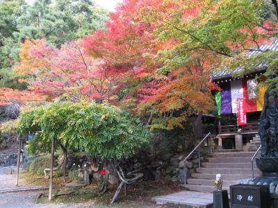 今熊野観音寺境内の紅葉