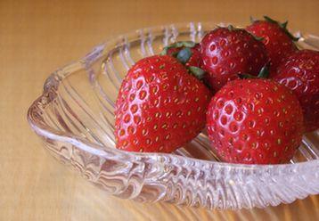 無農薬いちご_20100427 12