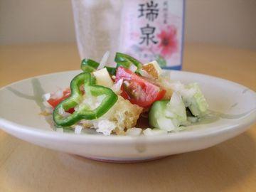 フランスパンとチーズ・玉ねぎ・トマト・きゅうり・ピーマンのサラダ_20100620