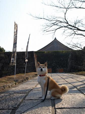 篠山城跡前にて
