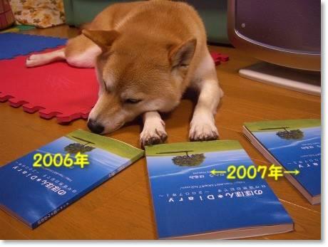 2006&2007年ブログ本