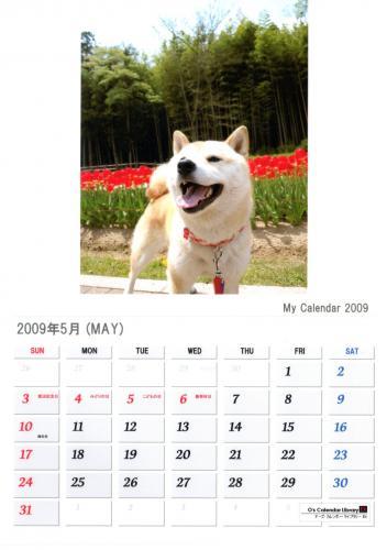 さくらカレンダー5月