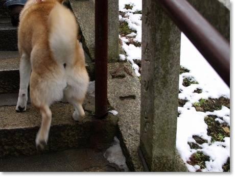 雪も残ってます!