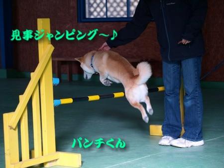 ジャンピング~パンチくん!