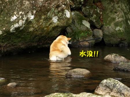 水没・・・