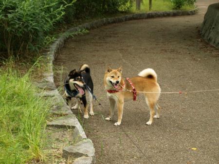 公園にて♪