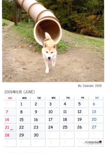 さくらカレンダー 6月