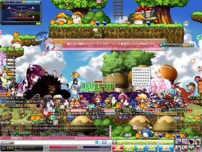Maple111127_230156.jpg