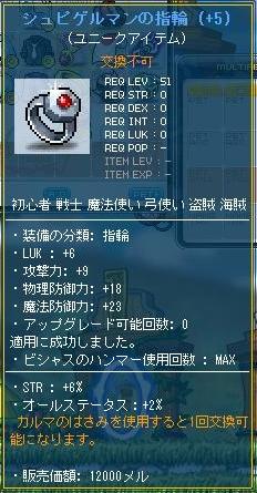 Maple111203_212940.jpg