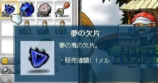 Maple111208_112154.jpg