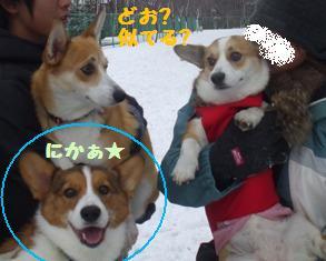 Rin081123-4.jpg