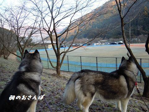 DSCN1568yo.jpg