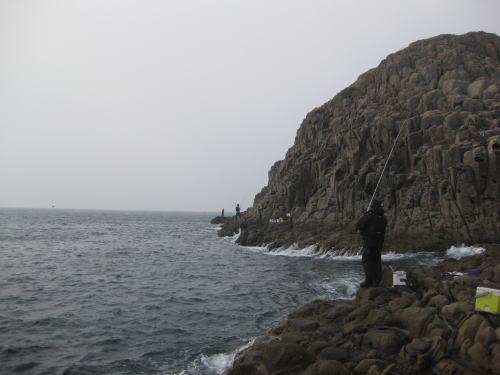 21年2月椛島6