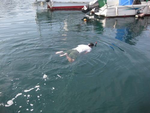 拓ボン水泳