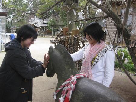 岡山神社の神馬