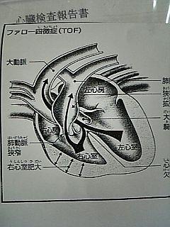 DVC00118.jpg