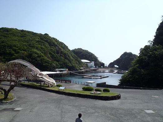 串本016