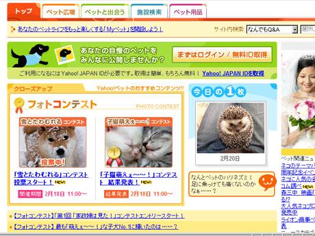 2009_0220_yahoo01.jpg