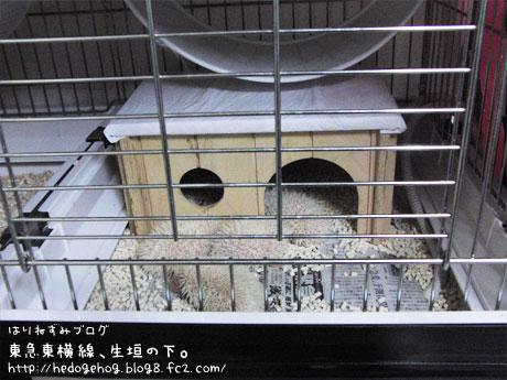 2009_0411_1.jpg