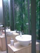 トイレの手洗い・森林の壁紙