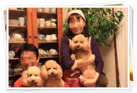 2010_0428_211619-IMG_1127.jpg