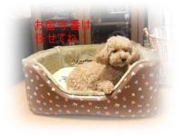 2011_0326_225720-DSCF3650.jpg