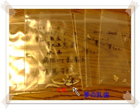 2011_0327_222143-DSCF3669.jpg