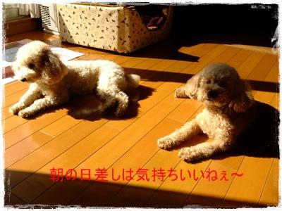 2011_0329_084744-DSCF3675.jpg