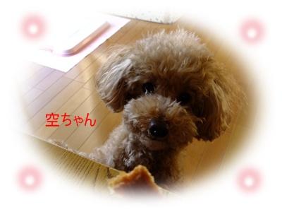 2011_0402_071545-DSCF3684.jpg