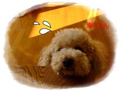 2011_0402_072611-DSCF3687.jpg