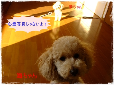 2011_0402_072621-DSCF3689.jpg