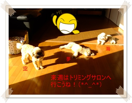 2011_0402_074839-DSCF3692.jpg
