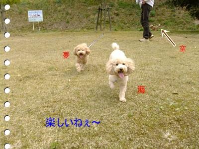 2011_0403_111451-DSCF3696.jpg