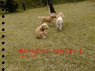 2011_0403_111635-DSCF3697.jpg