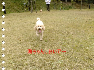 2011_0403_111733-DSCF3700.jpg