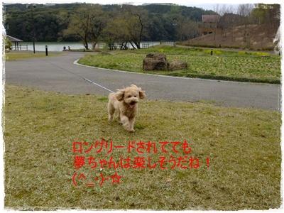 2011_0403_112733-DSCF3709.jpg