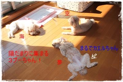 2011_0410_090522-IMG_1848.jpg
