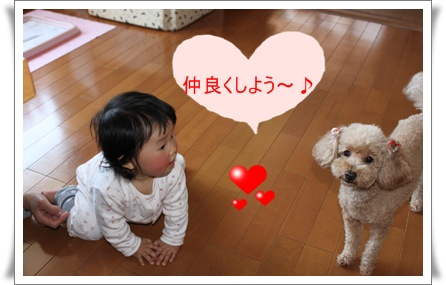2011_0412_134606-IMG_1876.jpg
