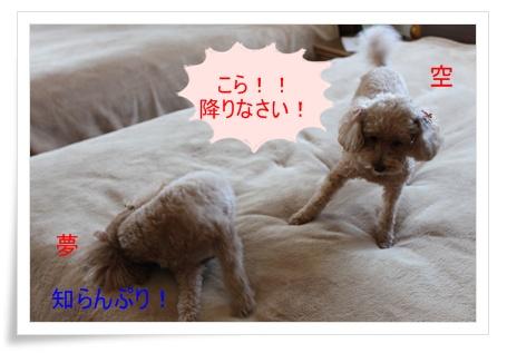 2011_0413_112536-IMG_1896.jpg