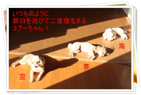 2011_0414_074334-IMG_1903.jpg