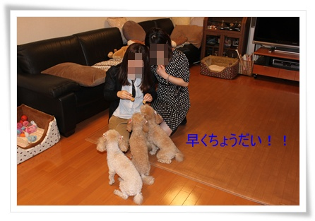 2011_0417_212603-IMG_1939.jpg