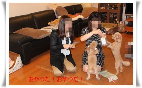 2011_0417_212906-IMG_1946.jpg