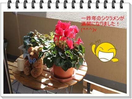 2011_0421_092408-IMG_1980.jpg
