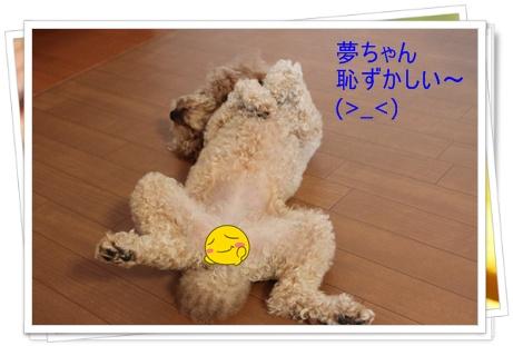 2011_0501_163541-IMG_2056.jpg