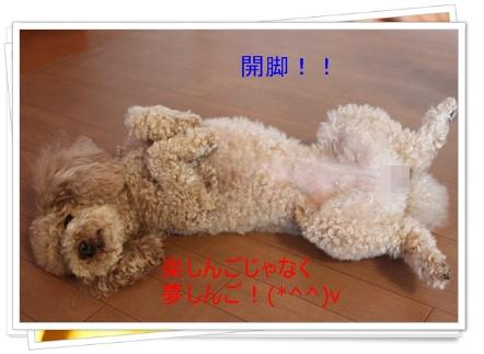2011_0501_163549-IMG_2057.jpg