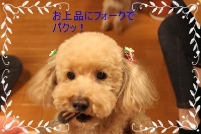 2011_0502_200127-IMG_2147.jpg