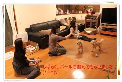 2011_0502_222947-IMG_2173.jpg