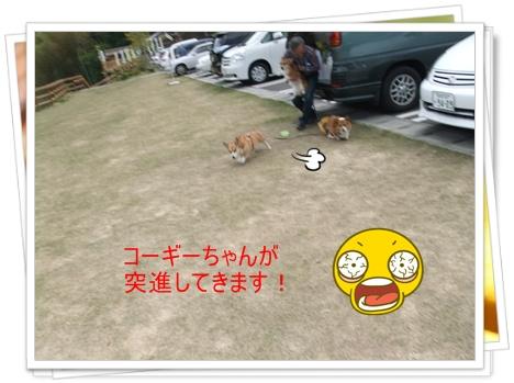 2011_0505_150216-DSCF4047.jpg